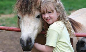 Calul, un partener în relaționare și socializare (I)
