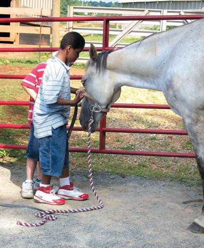Cu cât încrederea copilului în animal creşte, cu atât devine mult mai uşor de a-şi dezvolta abilităţile de relaţionare cu semenii săi.